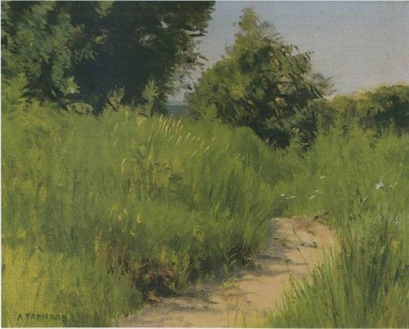 sunny lane by alexander farnham
