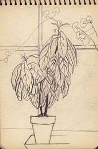 helen torr sketchbook pages by helen torr