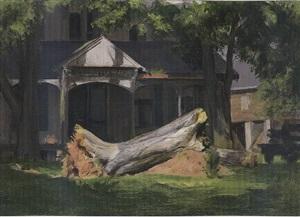 fallen tree by alexander farnham