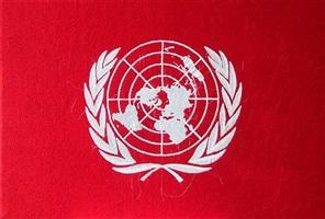 un flag by kim kira
