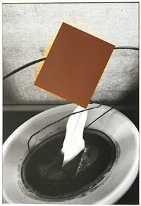 capillary action with brown rectangle by david ireland