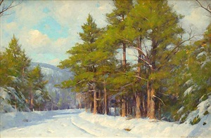 winter light by allen dean cochran