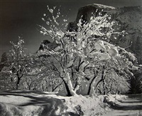 half dome, orchard, winter, yosemite national park, california, c. 1935 by ansel adams