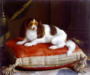 young dog on a cushion by jean ranc