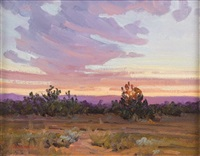 new mexico sundown by bill warden