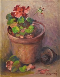 still life with geraniums by frank gervasi