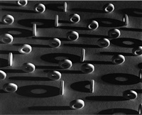 lifesavers by ruth bernhard