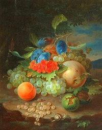 still life of fruit with snail by george forster