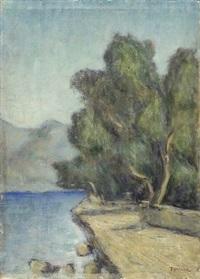 lago di iseo by fiorenzo tomea