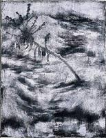 alienated landscape by pyo inbu