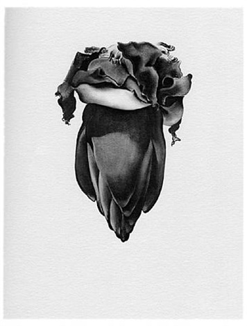"plate vii banana flower, from ""some memories of drawings"" portfolio by georgia o'keeffe"