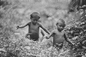 children in the amazon forest by eddie adams