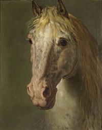portrait d'un cheval vu de face / full-frontal horse portrait by bénigne gagneraux