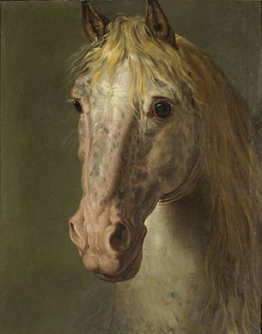 portrait dun cheval vu de face full frontal horse portrait by b nigne gagneraux on artnet. Black Bedroom Furniture Sets. Home Design Ideas