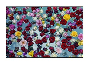 flowers in water by david bailey