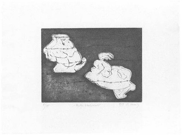 hinter stacheldraht by maria lassnig