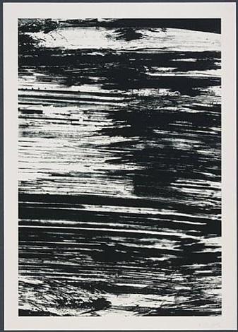 the amazon by ellsworth kelly