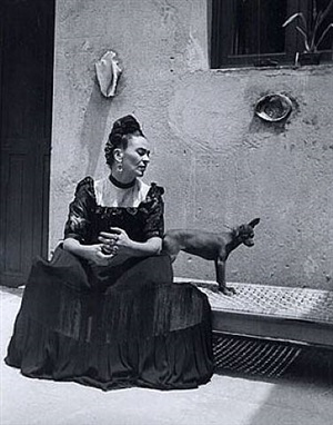 frida (seated with dog) by lola alvarez bravo