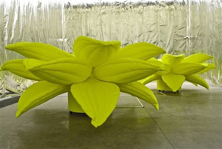 flower, flower by choi jeong hwa