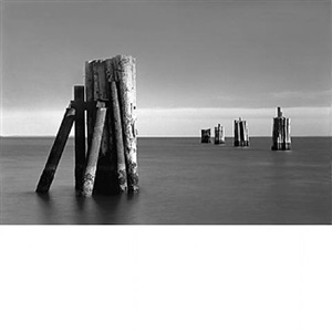 ferry pilings ii by daniel jones