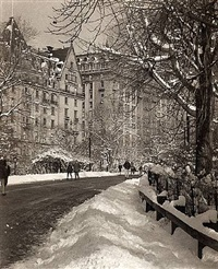 central park, near 72nd street, january by lyle allan