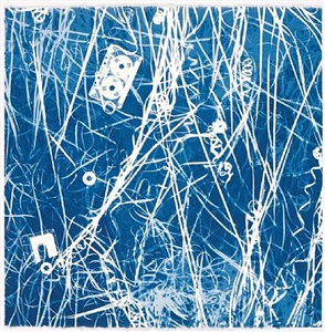 christian marclay - cyanotypes by christian marclay