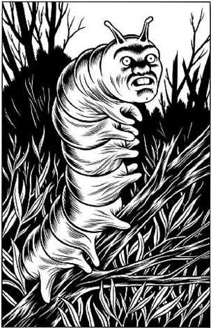 black hole back cover: worm creature by charles burns