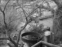 umbrian scene 2 by joel leivick