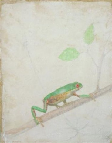 frog on a branch by victor koulbak