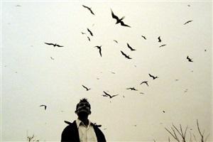 senor de los pajaros, lord of the birds by graciela iturbide