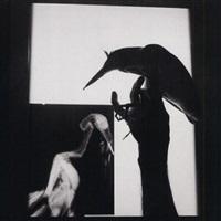 x-ray of a bird, qaxaca, mexico by graciela iturbide