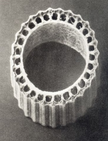 equisetum hyemale, (dutch rush, scouring rush, cross-section through a stem) by karl blossfeldt