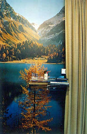domestic landscpaes. landscape with telephone shelf by thomas wrede