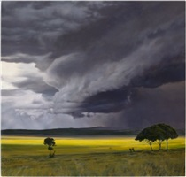 storm field by april gornik