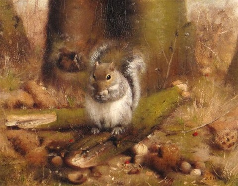 seated squirrel by joseph decker