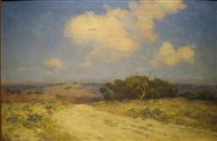 southwest texas by julian onderdonk