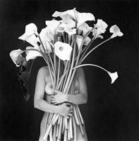 embrace of light / abrazo de luz by flor garduño