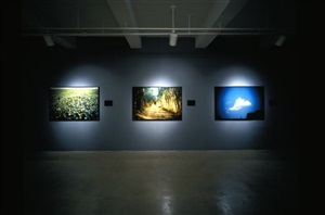 field, road, cloud by alfredo jaar