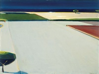 artichoke fields revisited by raimonds staprans