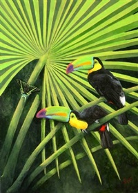 keeled bill toucans by andrea peyton