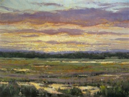 sunset on a marsh by carol jenkins