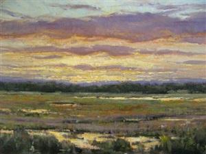 sunset on a marsh by carol jenkins