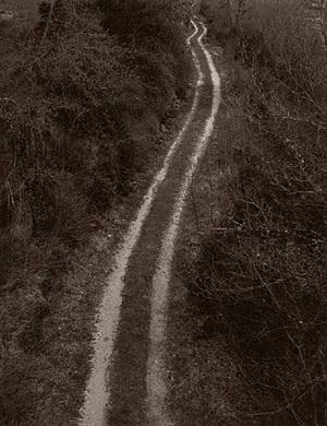 chemin rhône-alpes - 2003 by josé miguel ferreira