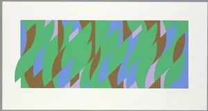 leap by bridget riley