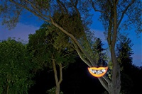 cheshire (hanging/orange) by sanford biggers
