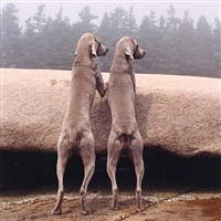 2 pm by william wegman