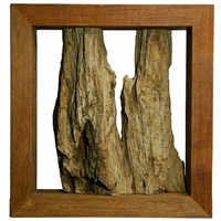 large exotic wood sculpture by zanini de zanine caldas