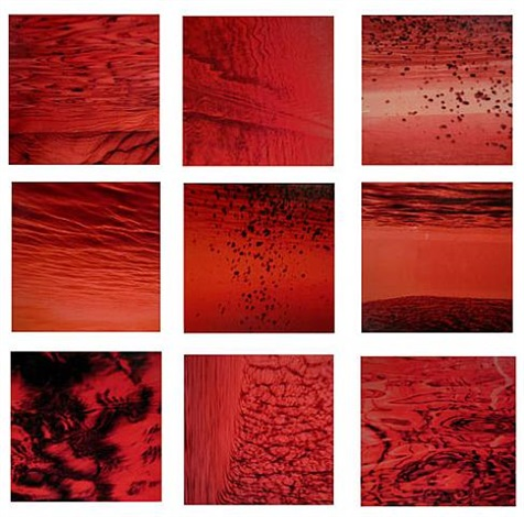underwater study – red series of 9 by luciana abait