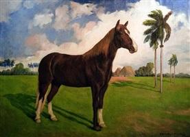 horse by enrique crucet