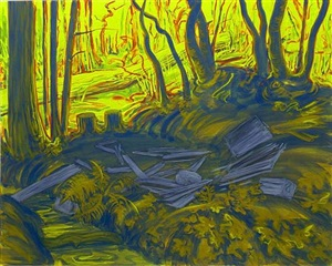 remains of camp by the creek at morningstar by sigrid holmwood